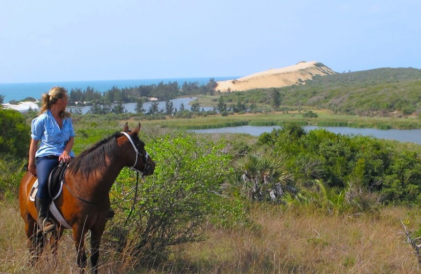 Discovering the Mozambique Fauna by horse