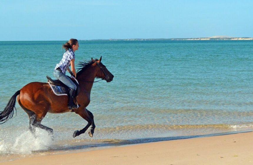 Horseback riding in the Ocean - FAQ - Escape to Africa Safaris