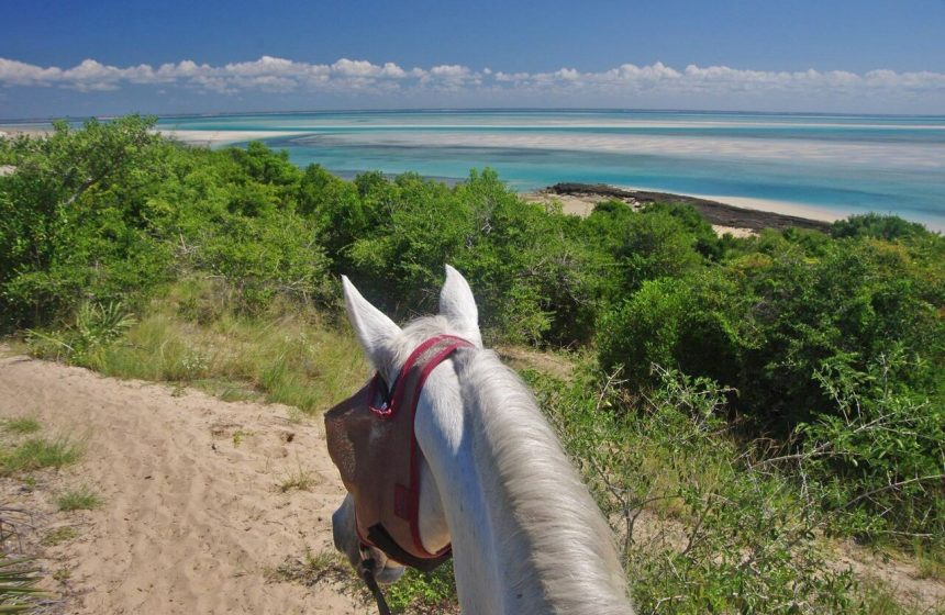 Horseback riding, Escape to Africa Safaris