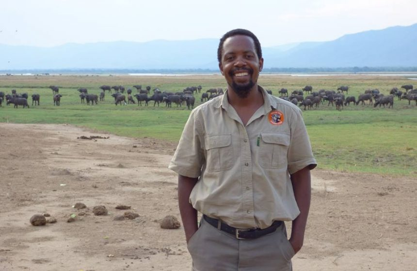Fannuel in front of a large herd of buffalos
