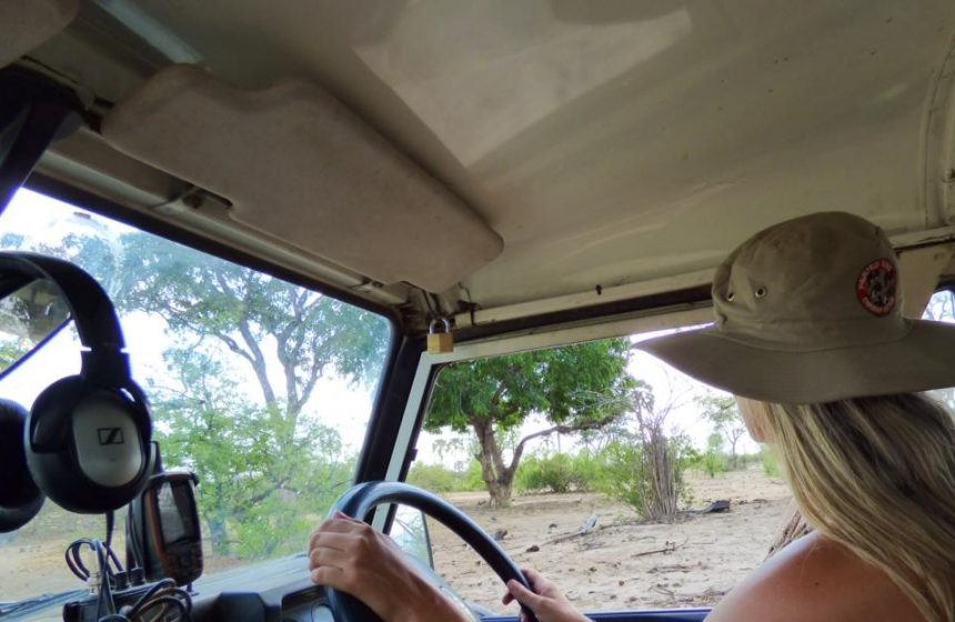 Colleen driving the jeep, Escape to Africa Safaris