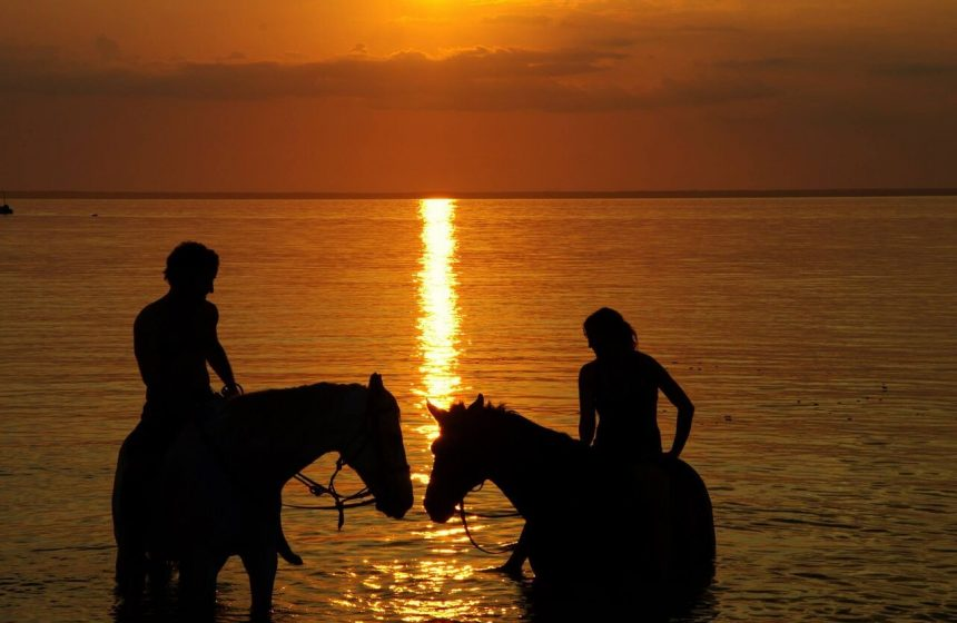 Swimming with the horses at sunset, Mozambique, Indian Ocean