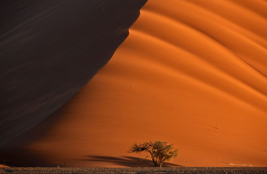 A game of shadows with the sand and sun, Namibian Desert